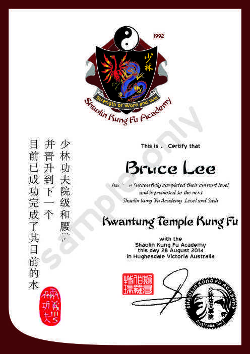 How to learn kung fu pdf